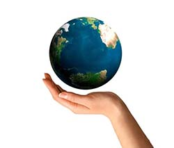 La Organización Mundial de Aduanas OMA y la Organización Mundial de Comercio OMC
